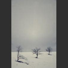 Neve vicino Ovada