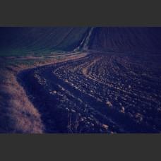 Terreno al tramonto