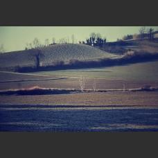 Il riposo di un campo