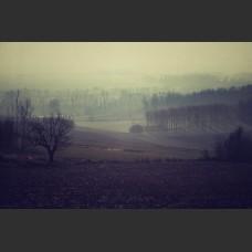 Mattino invernale